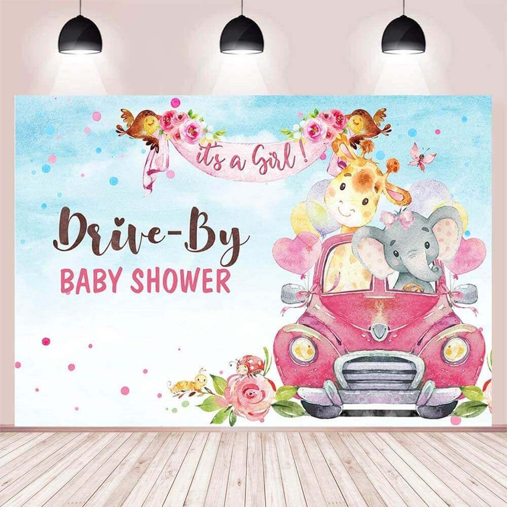 Drive by baby shower decoration ideas