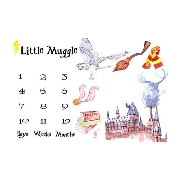 Harry Potter Nursery Ideas